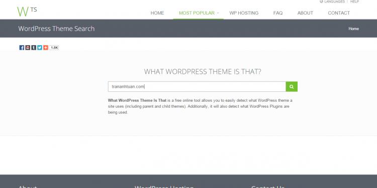 website-kiem-tra-theme-wordpress-mien-phi