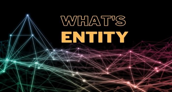 entity-la-gi